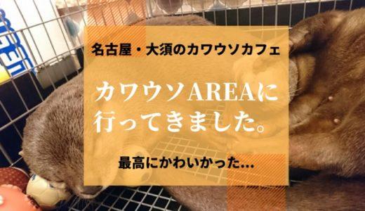 大須のカワウソカフェ「カワウソAREA(エリア)」に行ってきた