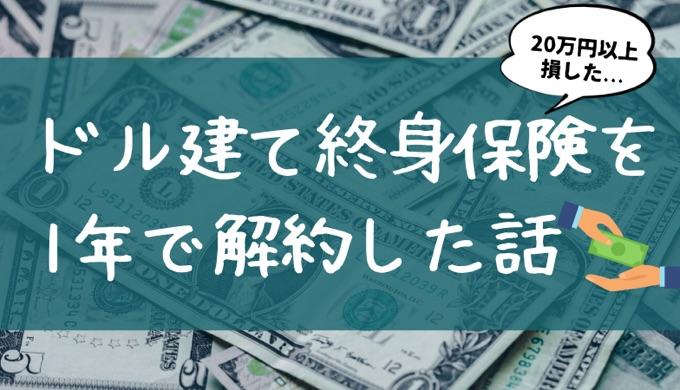 ドル建て終身保険のアイキャッチ画像