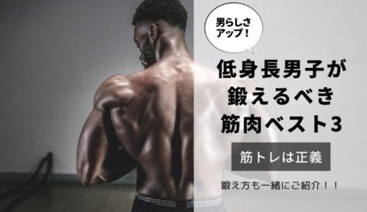 【ガタイを良くする】低身長男子が鍛えるべき筋肉部位ベスト3!