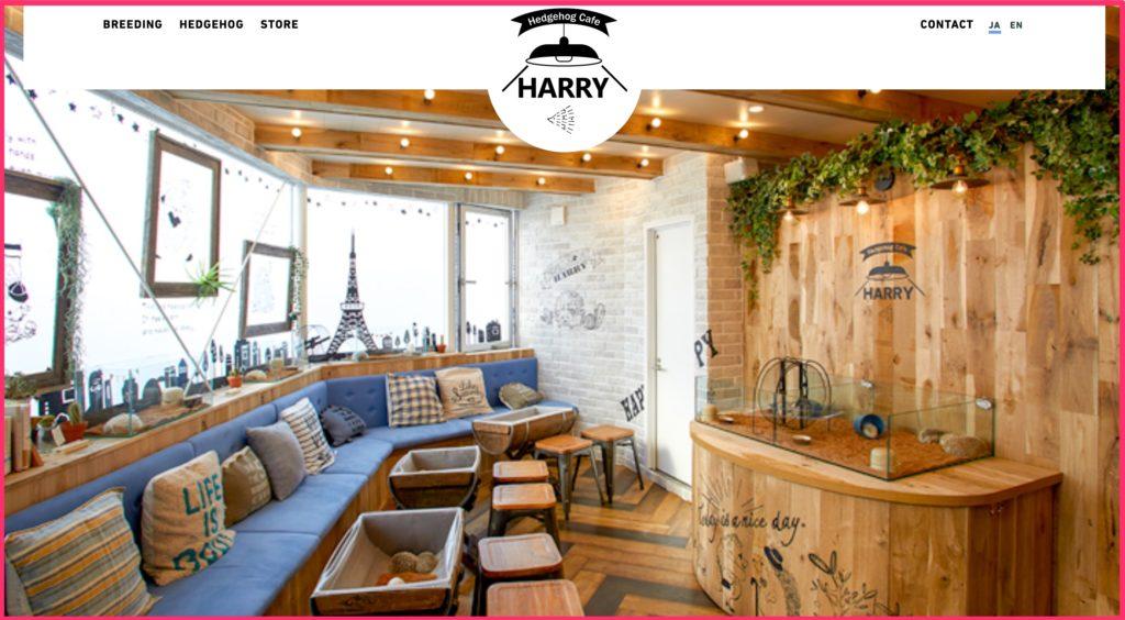 ハリネズミカフェの画像