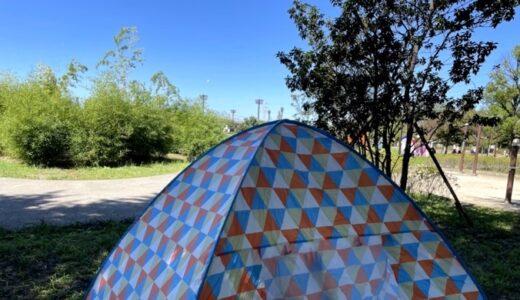 【ブルーシート卒業】公園でのピクニックが最高すぎる件